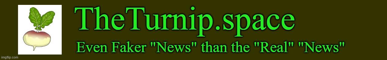 www.TheTurnip.space